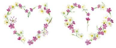 Corazones de las flores salvajes para el día de tarjeta del día de San Valentín ilustración del vector