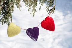 Corazones del día de tarjetas del día de San Valentín que cuelgan de árbol de pino imagenes de archivo