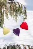 Corazones del día de tarjetas del día de San Valentín que cuelgan de árbol de pino en invierno foto de archivo libre de regalías