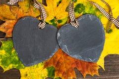 Corazones del otoño Fotos de archivo