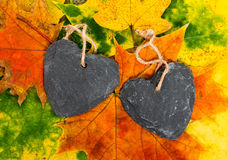 Corazones del otoño Imagen de archivo