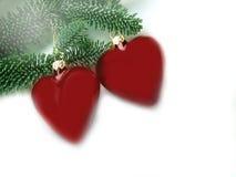Corazones del pino para la Navidad Foto de archivo