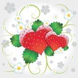 Corazones del vector de las fresas con remolino Imágenes de archivo libres de regalías