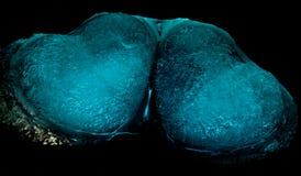 Corazones que brillan intensamente azules Imagenes de archivo