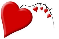 Corazones rojos del día de tarjetas del día de San Valentín que crecen en una vid negra Fotos de archivo libres de regalías