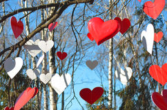 Corazones rojos y corazones blancos contra el cielo azul y árboles Imagen de archivo libre de regalías