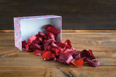Corazones y flores para el día de tarjeta del día de San Valentín Fotografía de archivo libre de regalías
