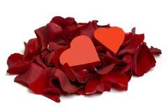Corazones y pétalos de Rose Imagen de archivo libre de regalías