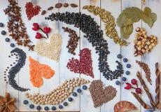 Corazones y remolinos hechos con las habas, las semillas y las especias Foto de archivo libre de regalías