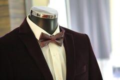 Corbata de lazo de Tailcoat_ Foto de archivo libre de regalías