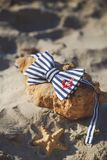 Corbata de lazo elegante en piedra en la playa ` S de los hombres y accesorios del ` s de las mujeres en el fondo de la playa are Imagen de archivo libre de regalías