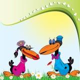 Corbeau heureux Image stock