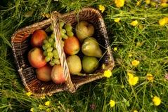 Corbeille de fruits dans un pré de fleur Photos libres de droits