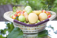 Corbeille de fruits en nature photo stock