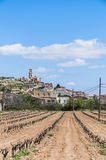 Corbera de Ebro village at Tarragona, Spain Stock Image