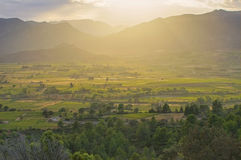 Corbieres lantligt landskap i sydliga Frankrike royaltyfri foto
