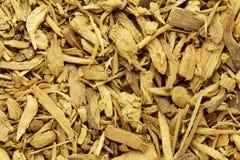 Écorces organiques de berbéris indien (aristata de Berberis) Photographie stock libre de droits