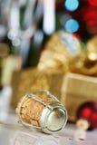 Corcho de Champán Fotografía de archivo libre de regalías