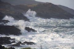 Corcho del oeste de la manera atlántica salvaje Fotografía de archivo