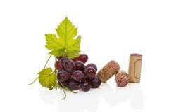 Corchos del vino, leafes de la vid y uvas rojas. Imagenes de archivo