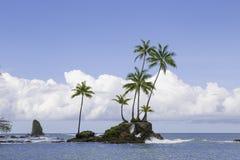 Corcovado国家公园,哥斯达黎加 库存照片