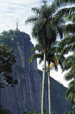 Corcovado hill and Christ statue seen from the Botanical garden, Stock Photo