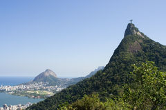Corcovado Mountain and Forest Stock Photos