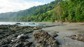 Corcovado National Park - beach view with tourists. Tourists walking in Corcovado National Park beach and forest, Osa Peninsula, Costa Rica Stock Photos