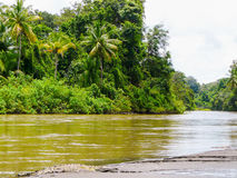 Corcovado National Park Royalty Free Stock Photography