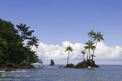 Corcovado nationalpark, Costa Rica Arkivbilder