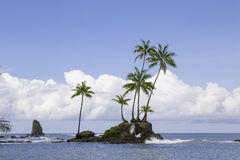 Corcovado park narodowy, Costa Rica Zdjęcia Stock