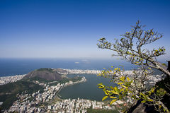 Corcovado View Stock Photo