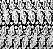 Cordón blanco Fotografía de archivo