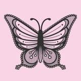 Cordón de la mariposa Fotografía de archivo libre de regalías