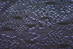 Cordón de las materias textiles Imagen de archivo libre de regalías