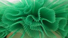 Cordón verde del plete Imagen de archivo libre de regalías