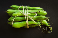Cord tied green beans Stock Images