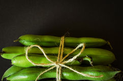 Cord tied green beans Royalty Free Stock Image