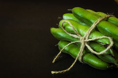 Cord tied green beans Stock Image