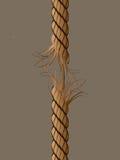A corda ajustou 2 ilustração stock