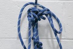 Corda con i nodi Fotografie Stock