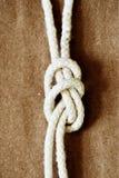 Corda con il nodo Fotografia Stock Libera da Diritti