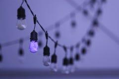 Corda das luzes no búfalo, New York Imagens de Stock Royalty Free