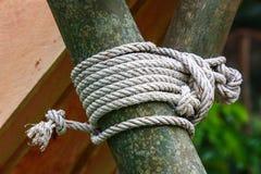 Corda de Boyscout fotografia de stock