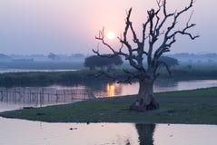 Corda de salvamento de Myanmar o riv irrawaddy imagem de stock royalty free