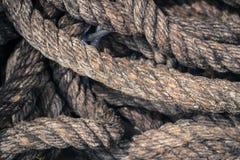 Corda del Queens con il bello fondo di struttura Fotografia Stock Libera da Diritti