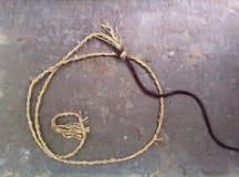 Corda della fibra tessile naturale Immagine Stock Libera da Diritti