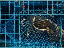 Corda della trappola dell'aragosta Fotografia Stock Libera da Diritti