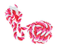 Corda do algodão para o brinquedo do cão imagem de stock royalty free