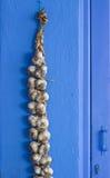 Corda do alho Imagem de Stock Royalty Free